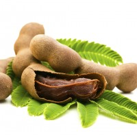 Theni District Tamarind Suppliers,Distributors,Merchant